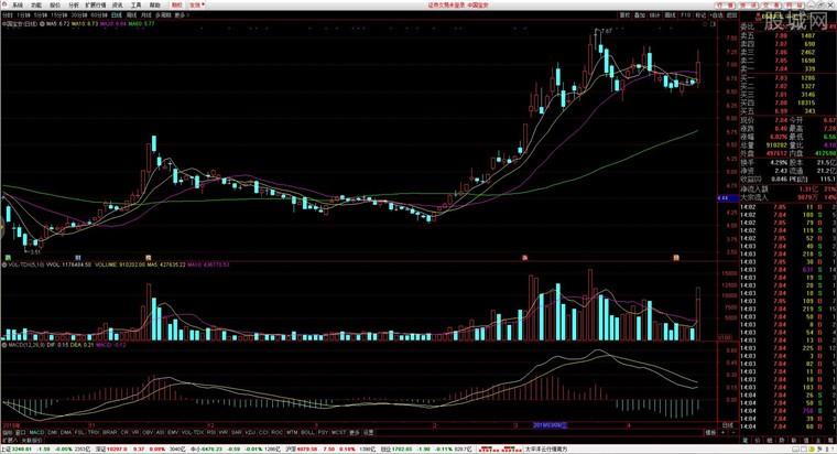 太平洋证券通达信股票期权行情分析界面