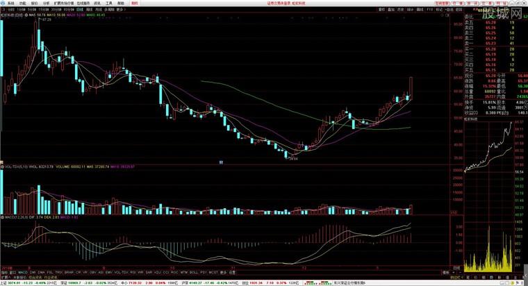 東興證券超強版行情分析界面